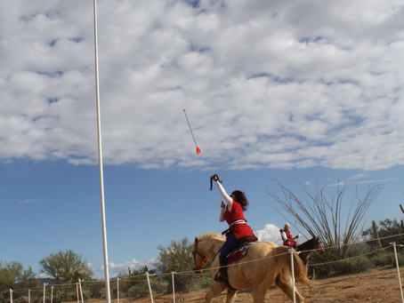 Desert Warriors
