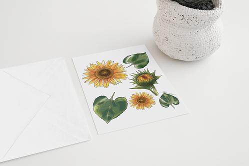 Sunflower handmade Greeting Card / Floral Illustration / A5 Card