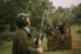Simluated Game Shooting Partridge
