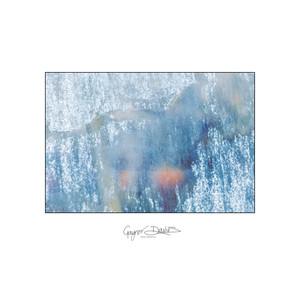 Glasshouse-1.jpg