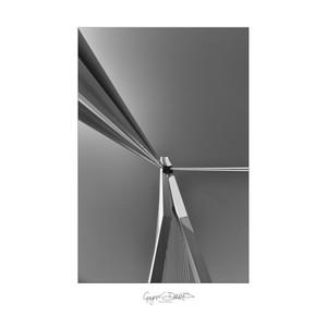vertical-3.jpg