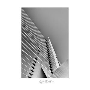 vertical-1.jpg