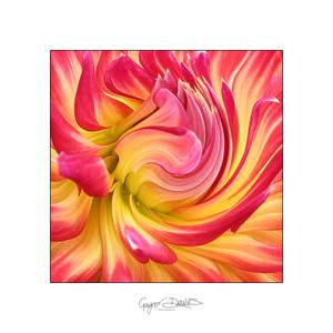 Flowers-06.jpg