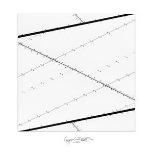 Architecture - detail - ARPS-11.jpg