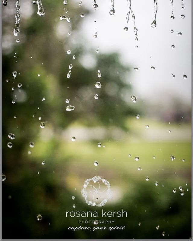 #portraitoftheday #portrait #ofrain #bellero #rain #drops #water #green #fresh #fullmoon #rosanakers