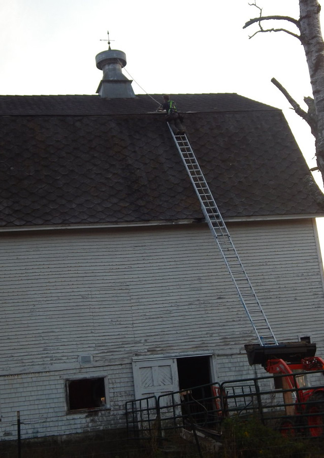 Fixing loose shingles on barn roof