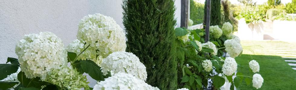 Pflanzung, Garten, Häußlein
