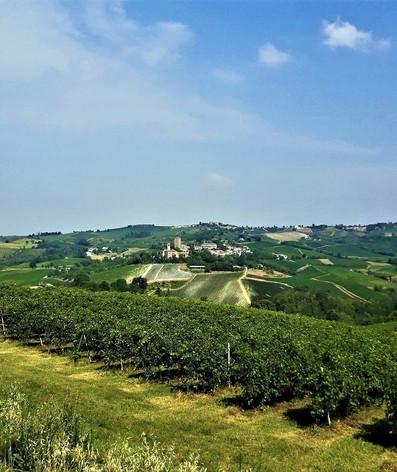 Estate in Oltrepò Pavese