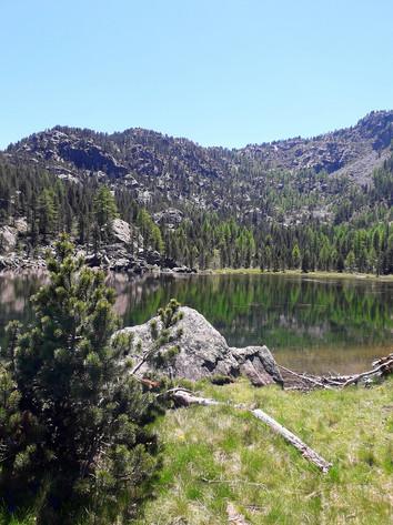 La bellezza del Parco Naturale Mont Avic