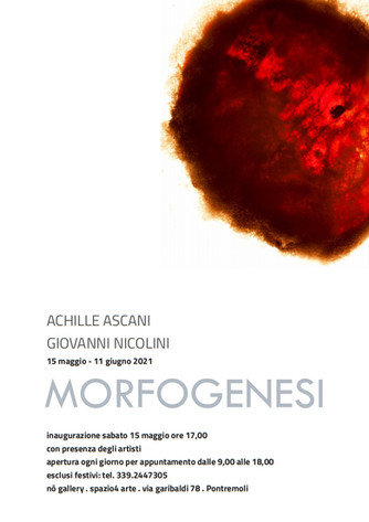 """Achille Ascani e Giovanni Nicolini avviano il progetto """"Morfogenesi"""" a Pontremoli"""
