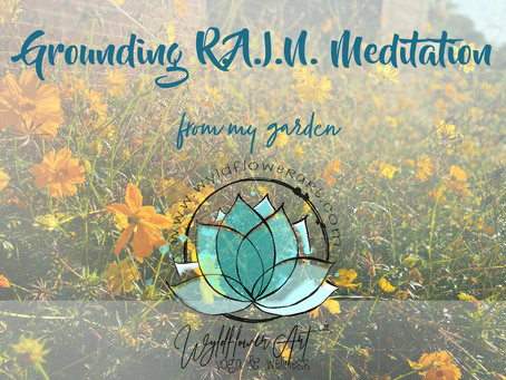 Grounding R.A.I.N. Meditation From My Garden