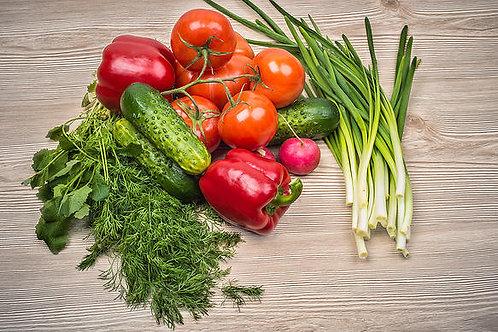 Рассада овощей