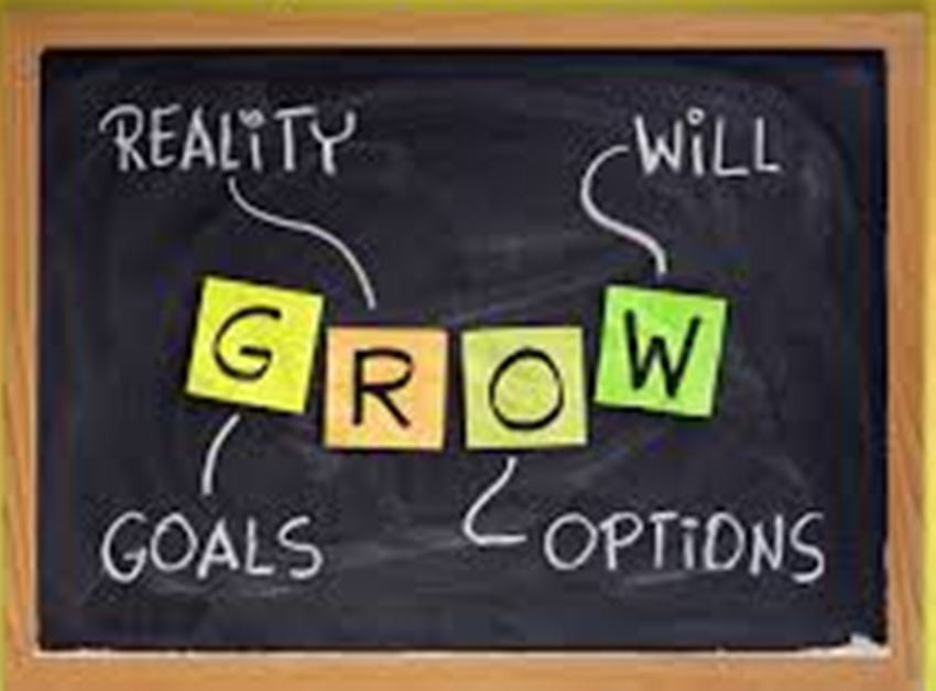GROW Goal-Reality-Options-Will.jpg