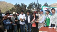 Se anunció la instalación del CITE Papa en Huánuco