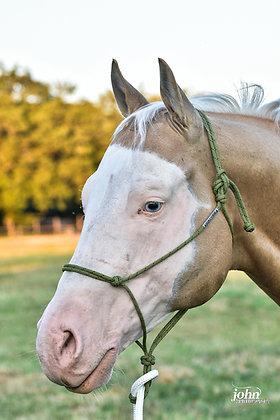 Licol Horse Reata Brannaman 6mm