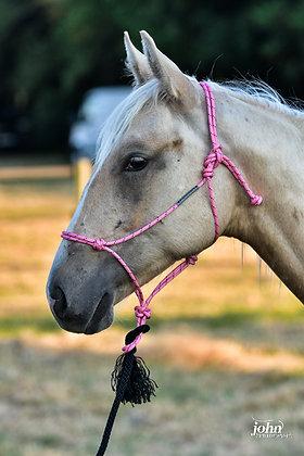 Licol Weanling/poney Buck Brannaman 6mm