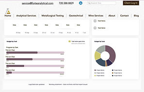 Forte Analytical Dashboard - Placeholder