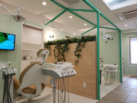 歯医者で森林浴