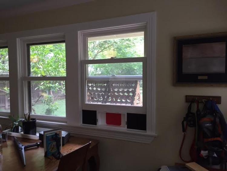Cat Door With Flap That Fits In Window. Cat Door Mounted In Window.
