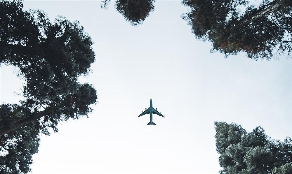 Iata apela governos para apoiar Combustível de Aviação Sustentável (SAF)