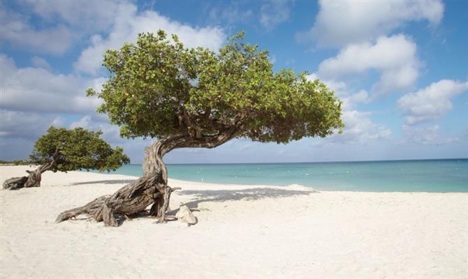 Praias paradisíacas são o principal atrativo de Aruba