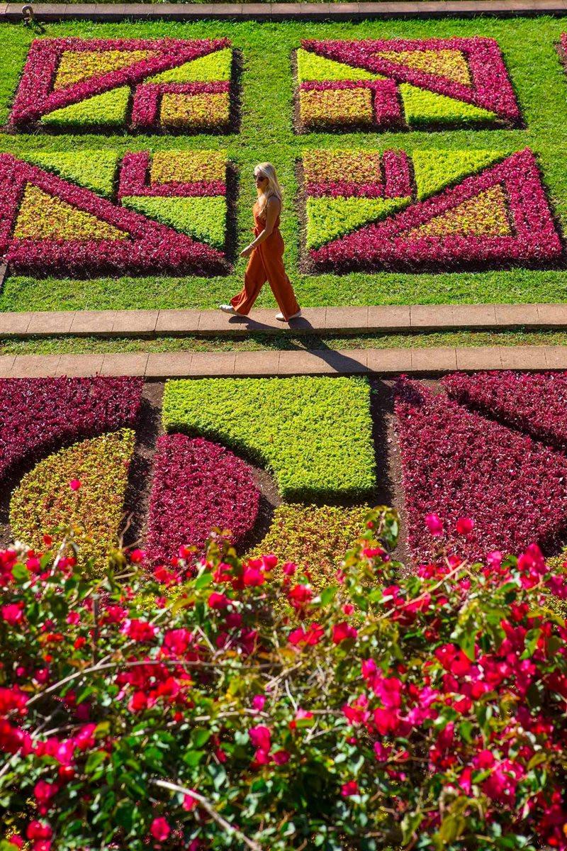 Mirantes, florestas, parques e jardins... a Madeira oferece uma variedade de opções para se conectar com a natureza