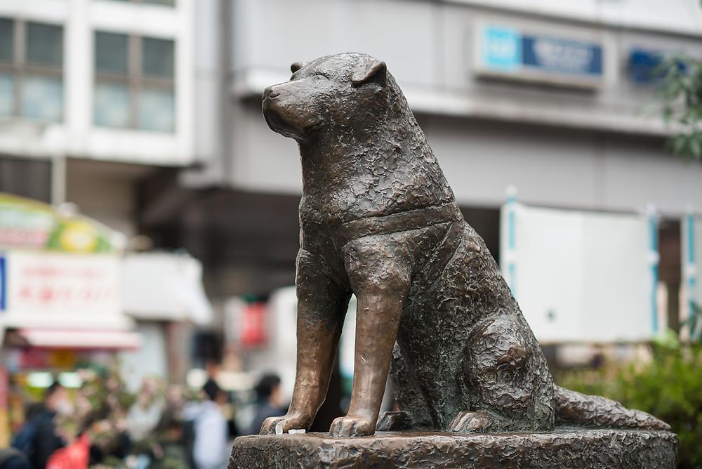 Estátua de bronze de Hachiko, Shibuya, Tóquio