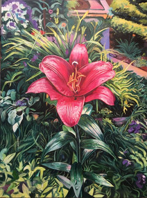 Park Lily