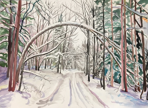 Snowshoe Path