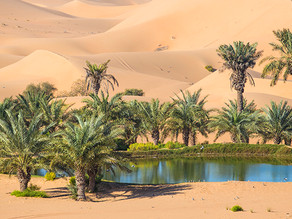 Your House Could Be the Oasis in an Inventory Desert!