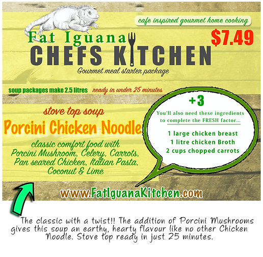 Porcini Chicken Noodle - website descrip