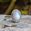 Thumbnail: Natural Moonstone Oval Shape 925 Silver Ring