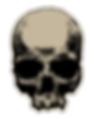 One-skull-One-Love-Ad-skull.png