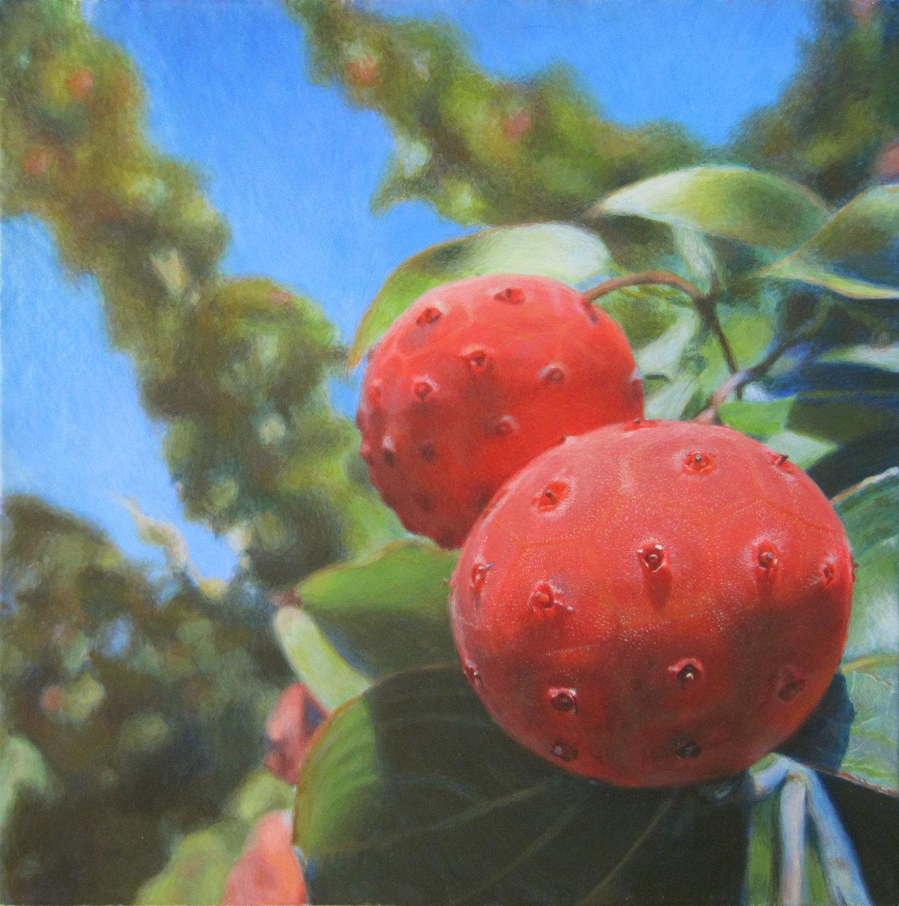 Academy Berries