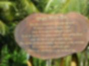 Ayurveda Sri Lanka Tee