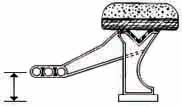 Type P5 Arm