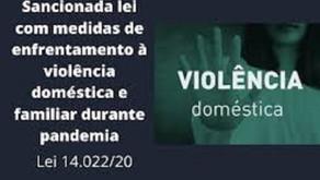 A nova lei de enfrentamento a violência domestica.