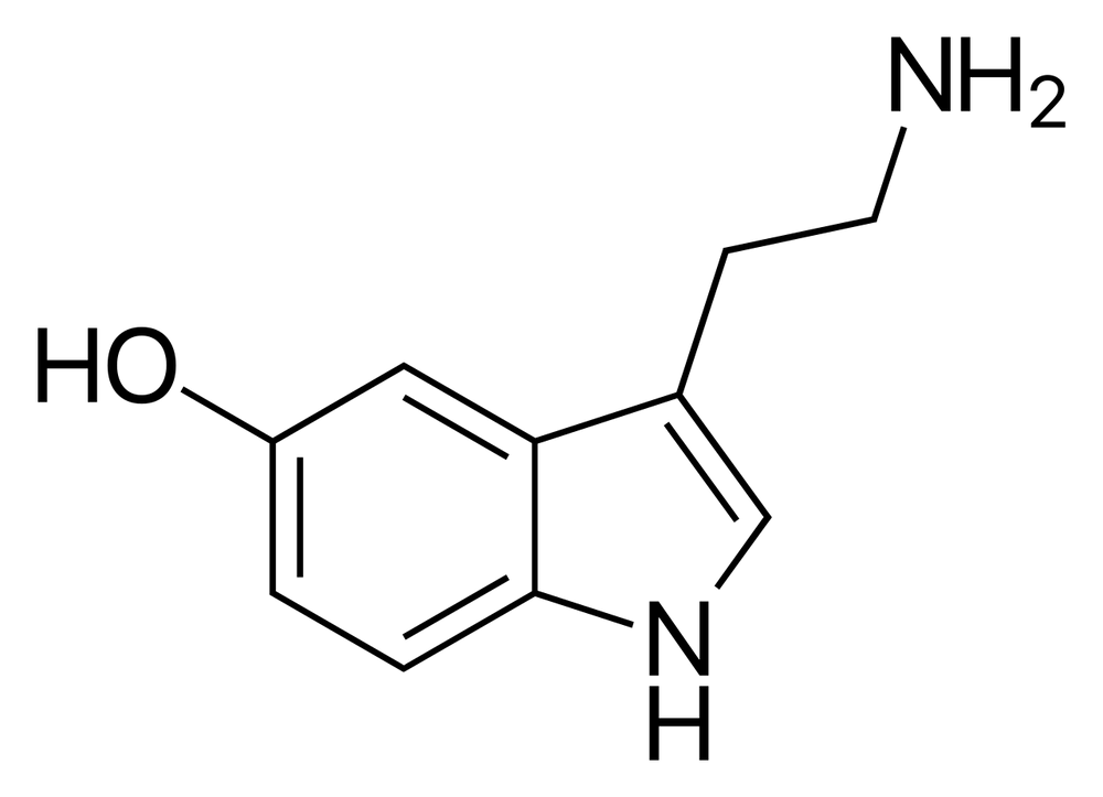 5-hydroxytryptamine molecule