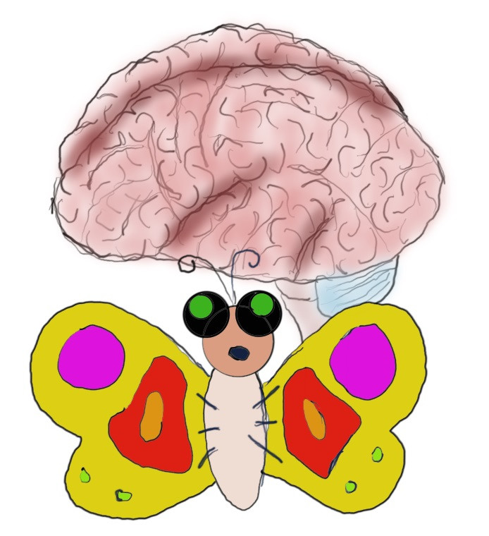 A brain and a butterfly