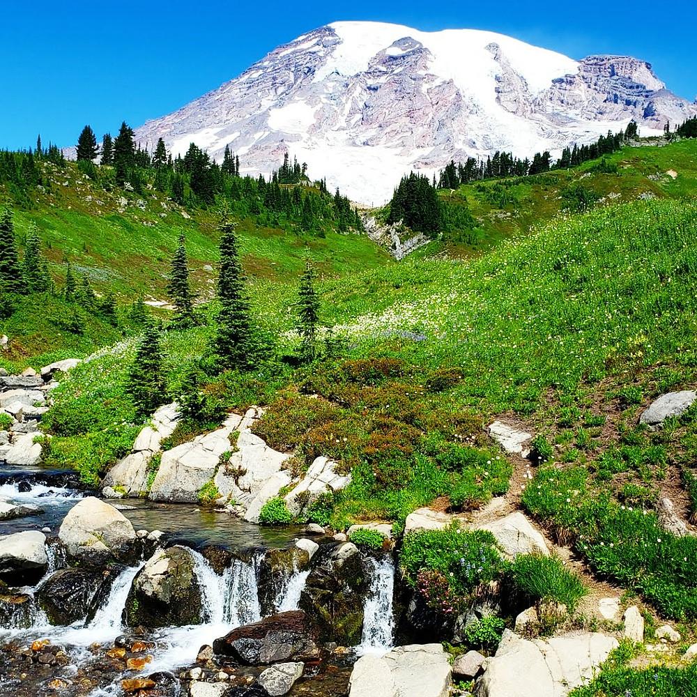 A picture of Mt. Rainier