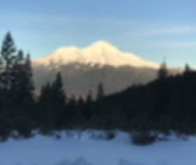 Peak Wellness Group - Mount Shasta