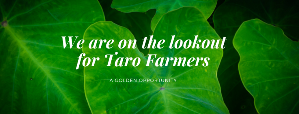 We are on the lookout for Taro Famers.pn