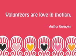 Volunteer 6
