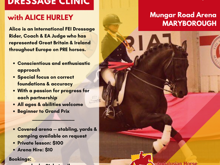 AHAA QLD Clinic with FEI Dressage Rider Alice Hurley