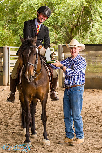 QLD State Hi Point Australian Andalusian