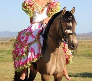 Rey Flamenco 4.jpg
