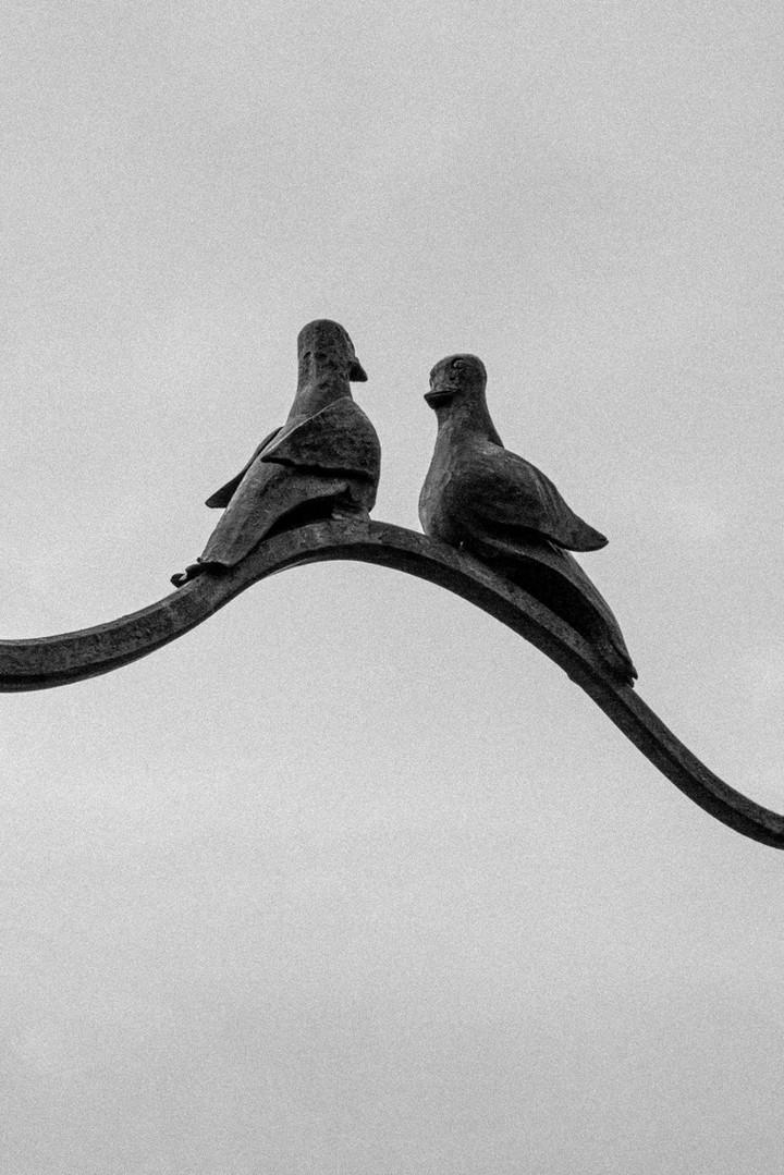 2019_Thomas_Gontar_Bird_Sculpture_07.jpg