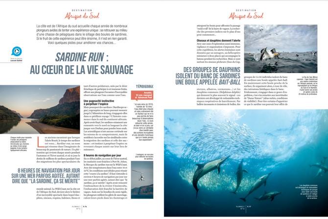 Article Sardine Run dans PLONGEZ! n°12