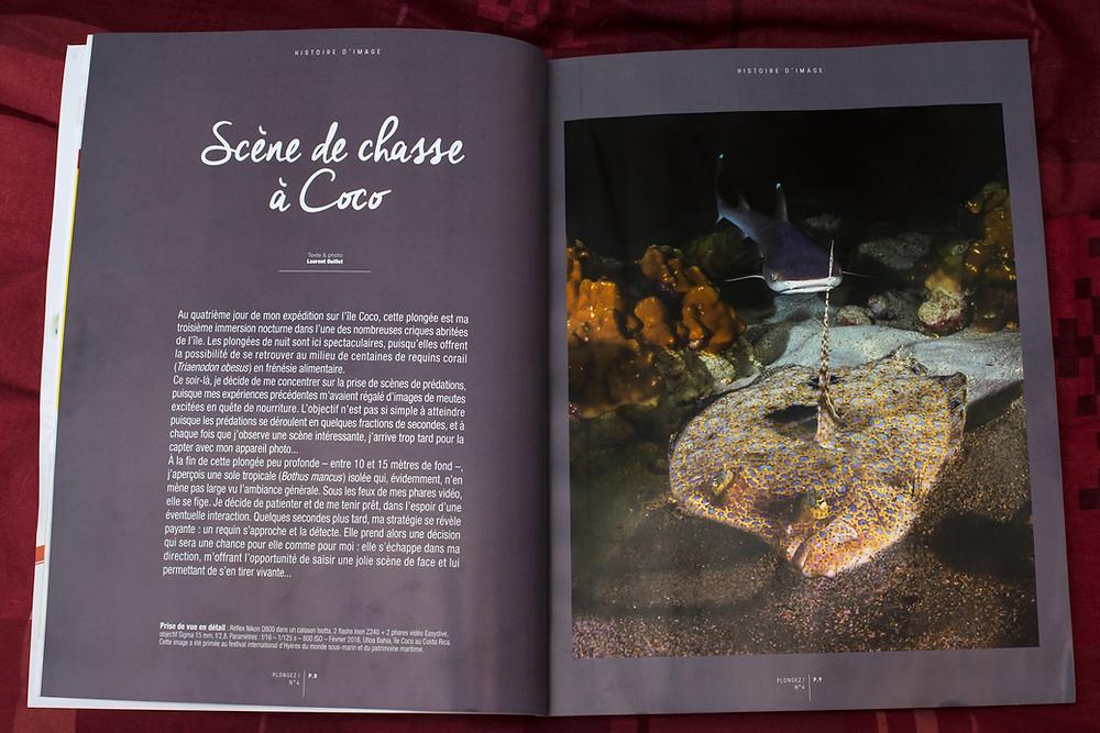 """Article: Scene de chasse à Coco """"Plongez n°4"""