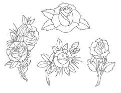 Am. Trad. Roses- Lines